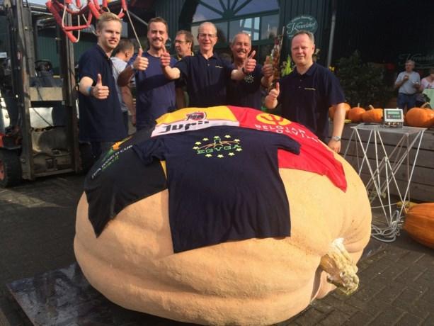Tongenaar behoudt record van zwaarste Belgische pompoen