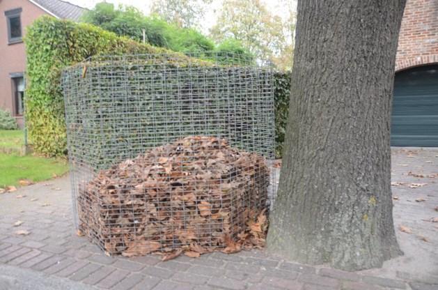 Dienst stadswerken plaatst bladerkorven in de straten