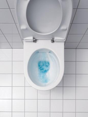 Hasselts bedrijf denkt aan  'iPot' of 'iPoop'-toilet