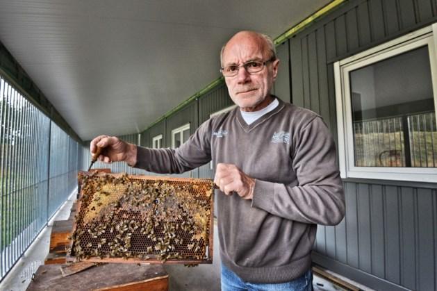 Limburgse bijenhal Kieleberg is klaar