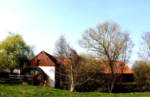 Grenspark Kempen~Broek onderdeel van groenste regio