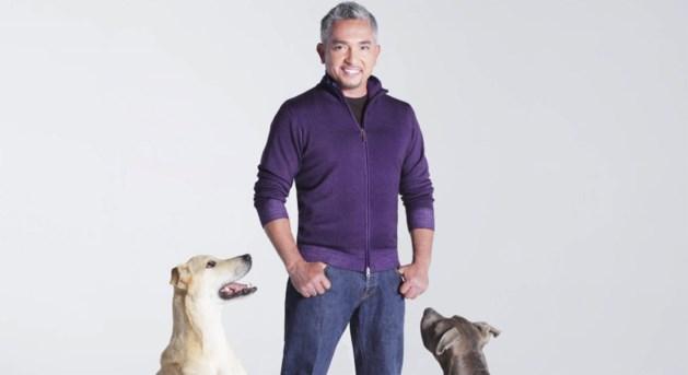 Wereldberoemde hondenfluisteraar ten onrechte dood verklaard