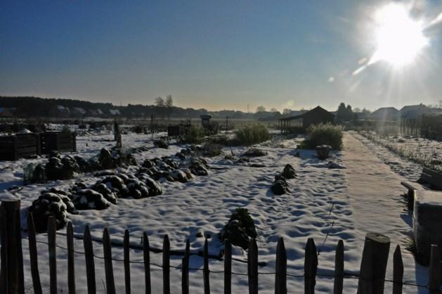 Neerpelt heeft actieplan klaar voor winterweer