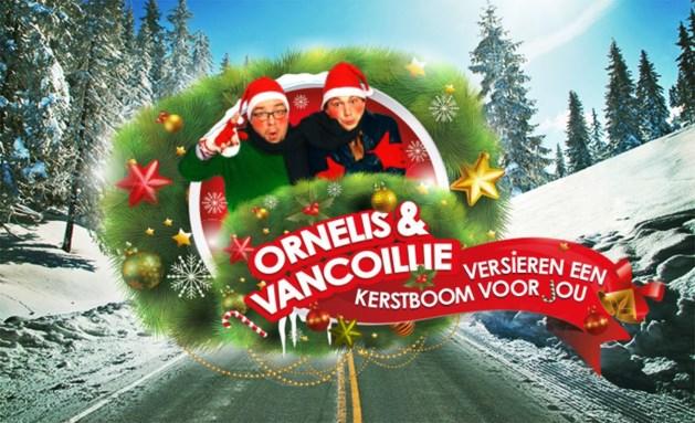 Limburgs schooltje wint exclusieve kerstboom Q-Music