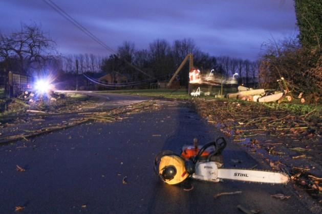 Afgebroken tak valt op stroomkabels