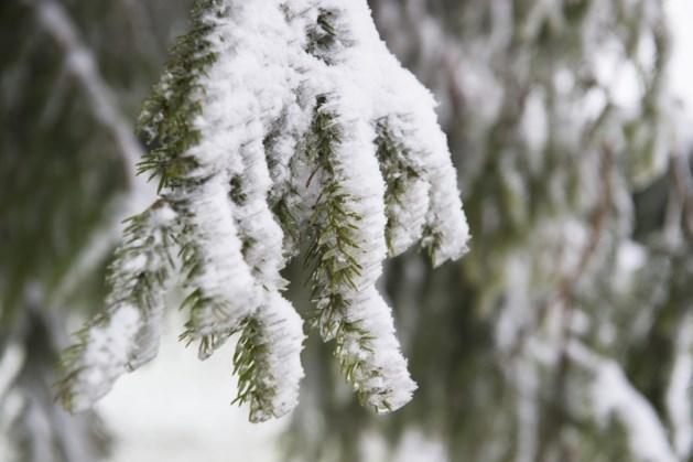 Mogelijk tot 25 cm sneeuw in Limburg