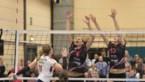 Beker van België volleybal - Kieldrecht en Gent in vrouwenfinale