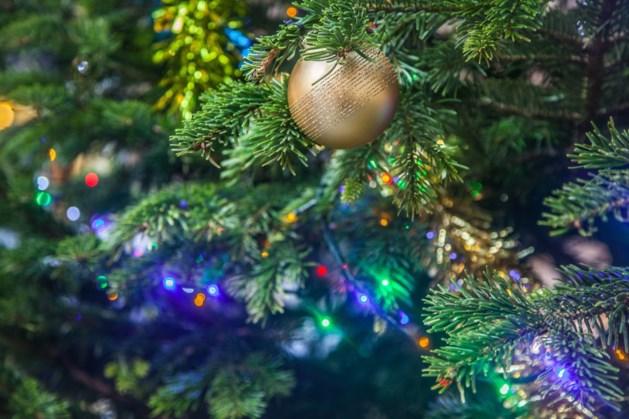 Defecte lampjes in kerstboom zetten huis in lichterlaaie