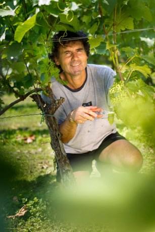 Limburgse wijn in toonaangevend Frans wijntijdschrift