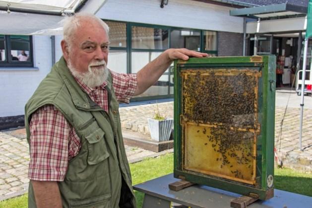 Nooit geziene bijensterfte bij Limburgse imkers