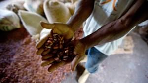 Chocola wordt wellicht duurder
