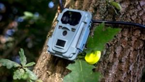 Camera filmt 48 uur lang zwerfvuil in Limburg