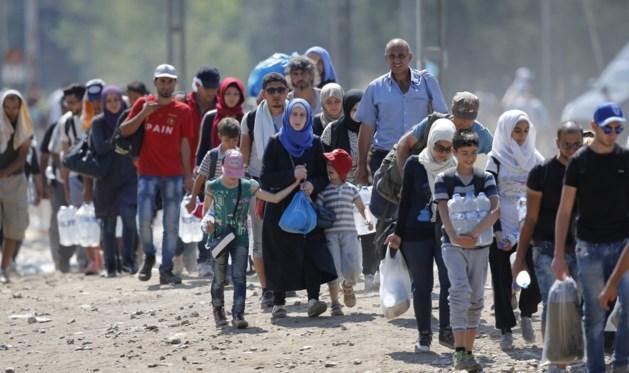 Wie is de miljardair die een eiland voor de vluchtelingen wil kopen?
