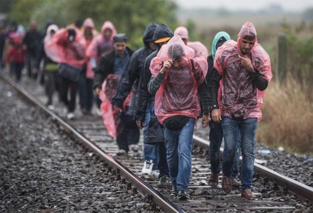 'Wie illegaal grens oversteekt naar Hongarije zal desnoods met wapenstokken en traangas tegengehouden worden'