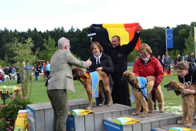 Beringse windhond is vice-Europees kampioen