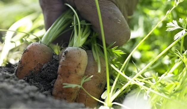 Vlamingen willen meer betalen voor landbouwproducten
