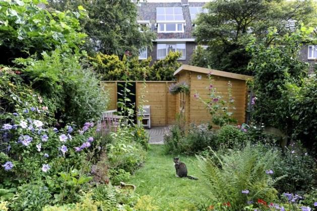 'Peuters zonder tuin zijn later dikker'