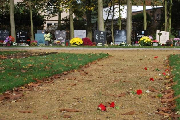 Vandalen laten spoor van vernieling na op kerkhof
