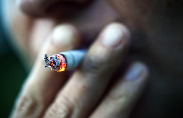 Roken is ook slecht voor de gezondheid van huisdieren