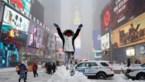 GEZOCHT: Limburgers in New York