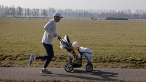 OESO geeft pluim aan Belgische papa's