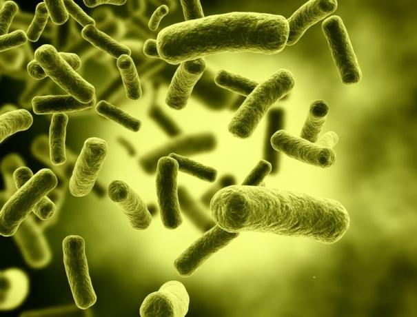 """""""Jaarlijks tot 10 miljoen doden door resistente bacteriën"""""""