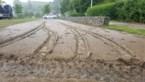 IN BEELD: Riemst een dag na de storm