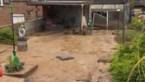 Hulpdiensten in Riemst nog bezig met kelders leegpompen, modder ruimen en straten vegen