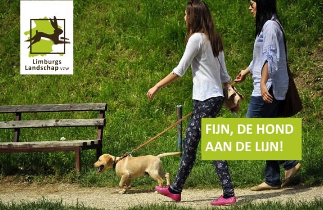 """""""Hond niet aan de lijn houden is gevaarlijk voor mens én natuur"""""""