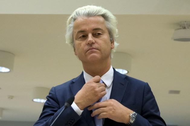 Wilders werkt aan negen nieuwe islamfilmpjes