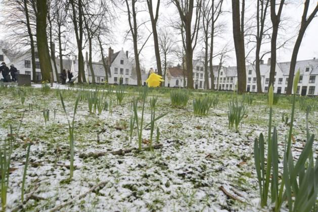 Na zomers weekend volgende week opnieuw sneeuw in de Ardennen?
