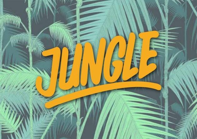 Genk opent jeugdkunsthuis Jungle