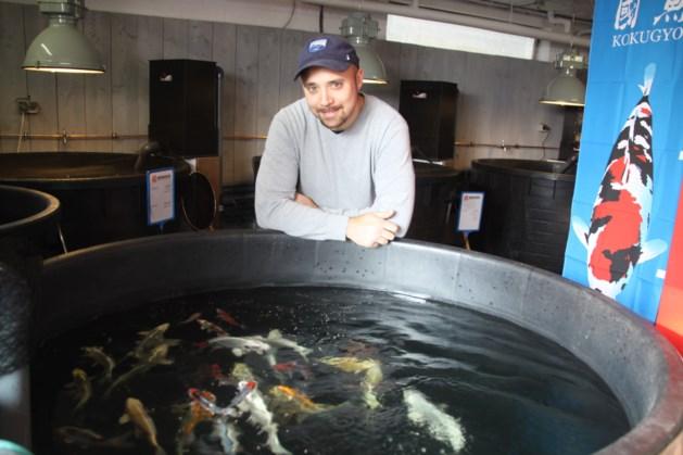 """""""Ik reis twee keer per jaar naar Japan om de vissen uit te kiezen"""""""