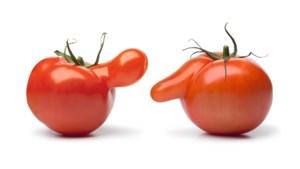 Delhaize verkoopt misvormde groenten in strijd tegen verspilling