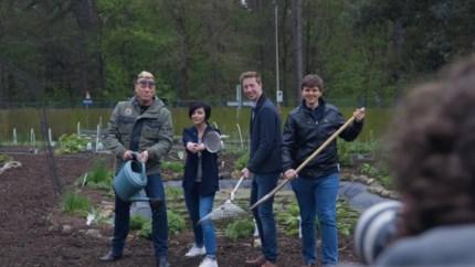 'Afvalvrij mei': dit zijn de 4 ambassadeurs