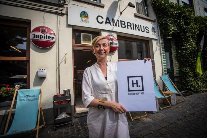 """Nieuw stadslogo kostte 115.000 euro: """"Hasselt heeft het"""""""