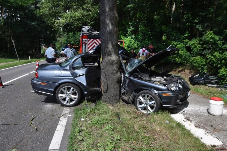 Auto tegen boom op Heppensesteenweg in Ham