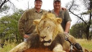 Ook zoon van Cecil de leeuw doodgeschoten door jagers
