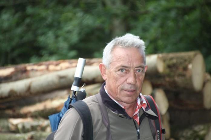 Bomenkap in broedseizoen op Lozerheide in Bocholt