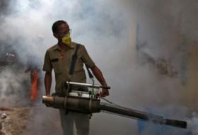 Al meer dan 300 mensen gestorven op Sri Lanka na uiterst zware uitbraak van dengue koorts