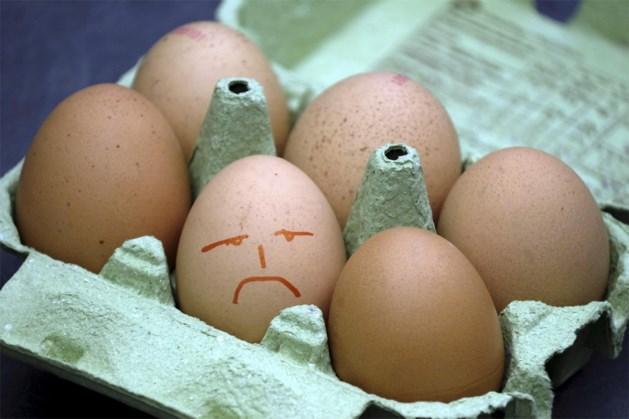 Fipronil-crisis: Zo herkent u eieren die u niet mag eten