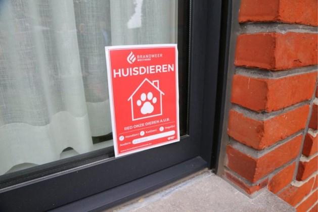 Deze sticker kan uw huisdieren redden bij woningbrand
