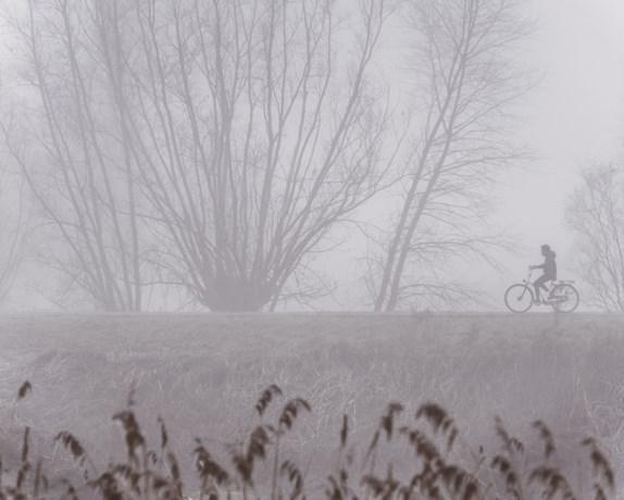 KMI waarschuwt voor plaatselijk dichte mist