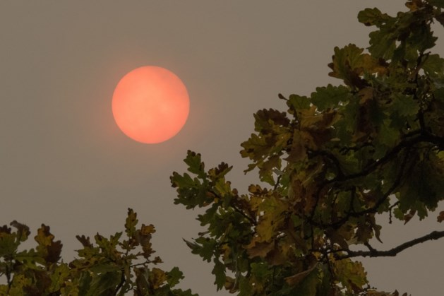 Opmerkelijk spektakel: rode zon boven België gespot