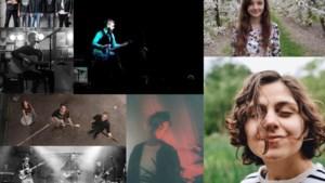 Laatste Limbomania-voorronde geeft podium aan breekbare singer-songwriters