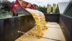 Kamer maakt compensaties voor getroffen bedrijven fipronilcrisis mogelijk