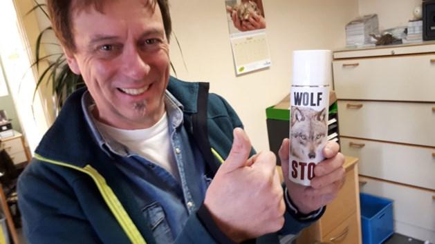 1 APRIL. Natuurhulpcentrum vindt partner voor wolvin Naya in Duitsland