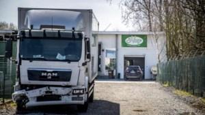 FAVV neemt 600 koeienmagen in beslag en legt exportverbod op