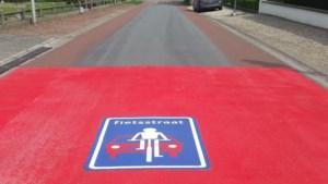 Rozenstraat is eerste fietsstraat