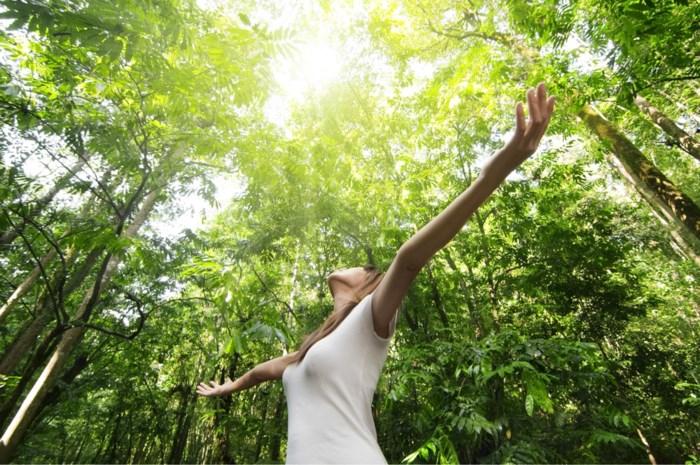 Deze Japanse manier van ontstressen brengt de rust terug